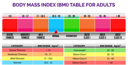 bmi index scale classification or body mass index chart information concept. eps 10 vector, easy to modify