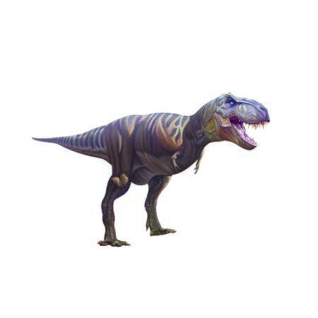 Dinosaurtyrannosaurus Stock Photo