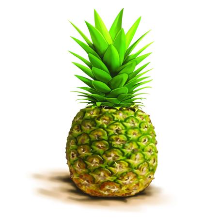 pine apple: Pine apple