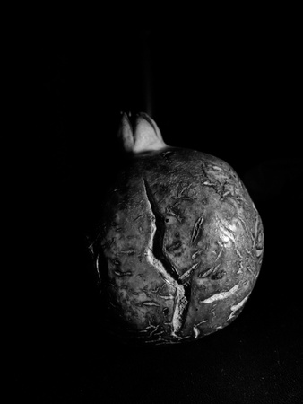 Black and white pomegranate against dark background