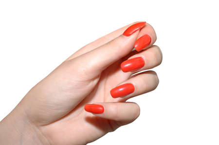 manicured: Perfectly Manicured fingernails