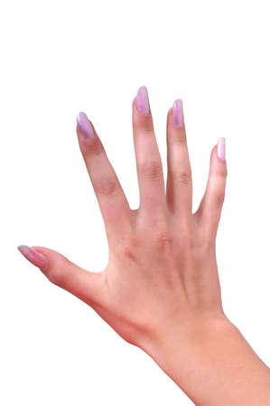 Manicured pink nails photo