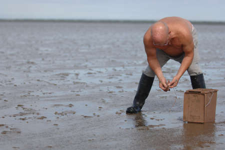 beachcombing: Beachcomber searching for flat fish off the coast of Dublin Stock Photo