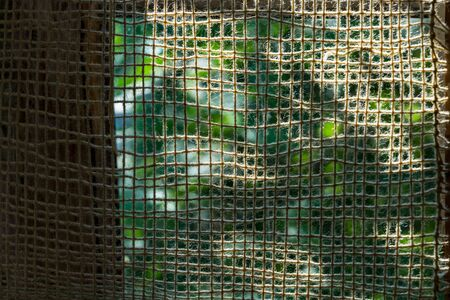 A rare fabric of cotton fluffy yarns attached to the wooden frame is against sunlight. There is summer greenery behind the fabric net. Part of the grid is shadowed.