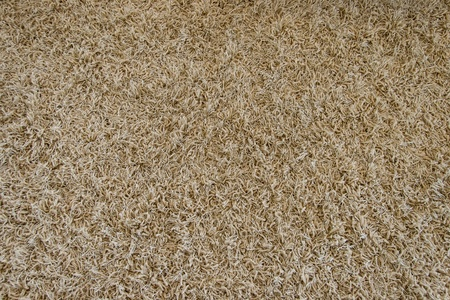 texture of a brown carpet with long pile  photo