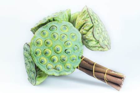 Lotus seeds green  photo