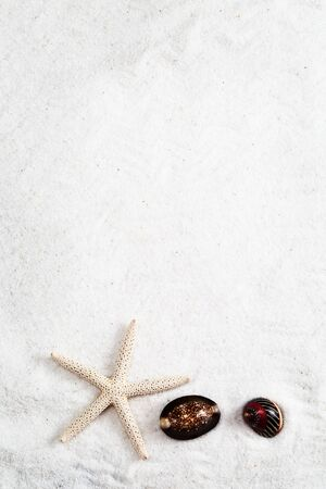 starfish and cowrie on the white sand background