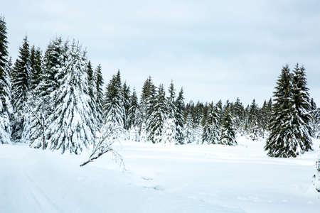 icily: Winter scenery with snow Stock Photo