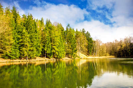 frhling: Lake in the forest Stock Photo