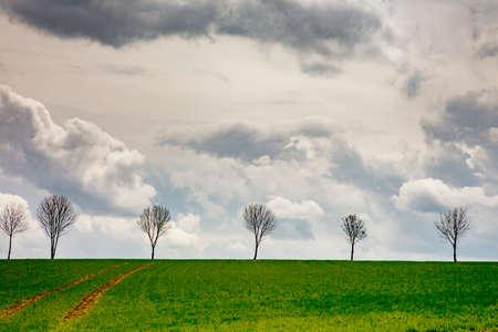 erzgebirge: Nature landscape in spring