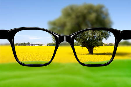 sharply: Glasses against natural scenery