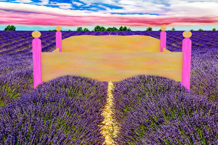 Bed in the lavender field