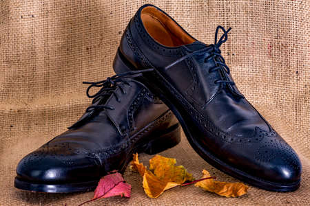 Elegant men's shoes