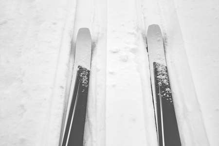 Cross-country skis in winter landscape  Stock Photo