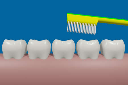 Healthy teeth in the series, 3D illustration