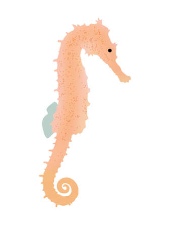 drawn seahorse in the water, illustration