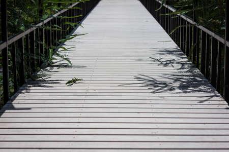 white Wooden Bridge in the marsh