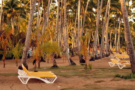 Caribbean strand with chairs and sport place by the evening photo
