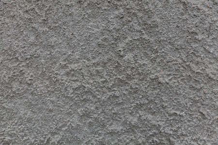 distinctive: gray stone wall background with a distinctive structure