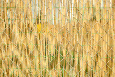 a house with a straw: Straw coated wire fence in the garden of a house