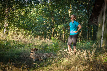walk in: Cheetah on a walk with a young woman in the forest in summer Stock Photo
