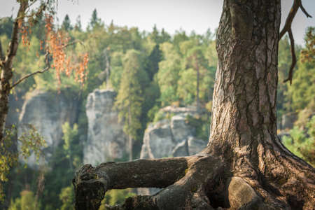 The rock mass in the Czech natural paradise awaits tourists in the summer season