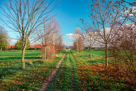 pathway in green meadow whith autumn colors Stock Photo