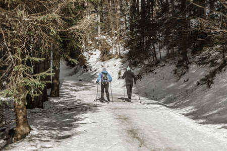 Group of people cross country skiing on winter morning Stock Photo