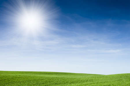 medow: Green field with blue sky and sunbeam