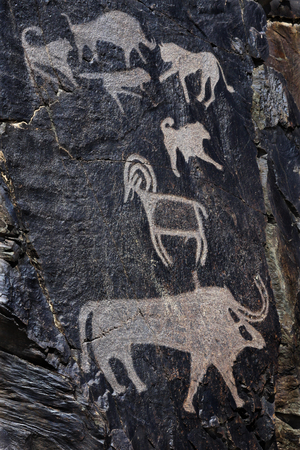 Palaeolithic petroglyphs in the famous Sarmish Gorge (Sarmishsay). Sarmishsay is the largest of many picturesque gorges along the southern slopes of the Karatau range, Uzbekistan. The Petroglyphs of Sarmishsay give quite a comprehensive picture of local fauna thousands of years ago. Today most of the animals they portray have disappeared. Stock Photo
