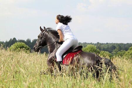 Vrouwelijke rider en Russische dravende merrie in de zomer weide