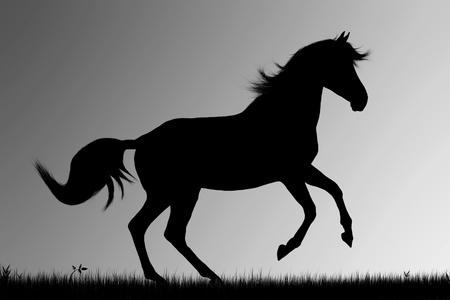 grey horses: Silhouette of running horse on gray  background Stock Photo