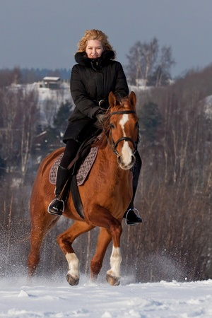 Young woman riding Russian Don horse breed photo
