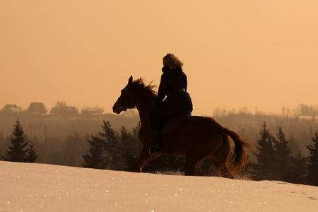 hooves: Ragazza russa a cavallo Don cavallo al tramonto