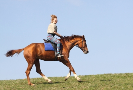 Girl on a horse of the Don breed Stock Photo - 13714311