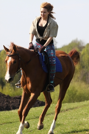Girl rides a horse of the Don breed photo