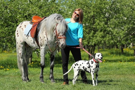 The girl with a spotty horse and a spotty dog outdoors at summer day