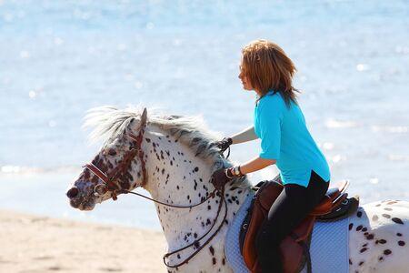 cola mujer: Paseos en caballo Chica Altai en la costa del Golfo de Finlandia