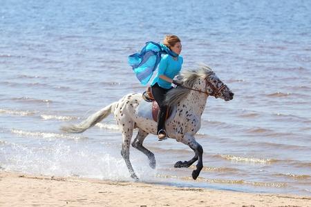 cola mujer: Chica en el pa�uelo de seda azul monta un caballo de Altai