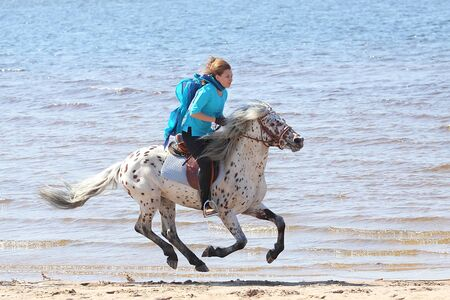 Girl in silk scarf rides a Altai horse of the shore of the Gulf of Finland photo