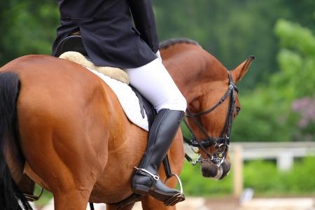 Horse rider at the dressage competitions Archivio Fotografico