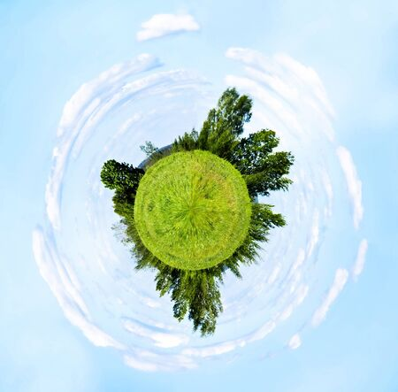Spherical panorama, summer meadow and forest photo