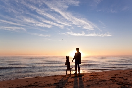 Woman plays with dog on the shore of the lake at sunrise Archivio Fotografico