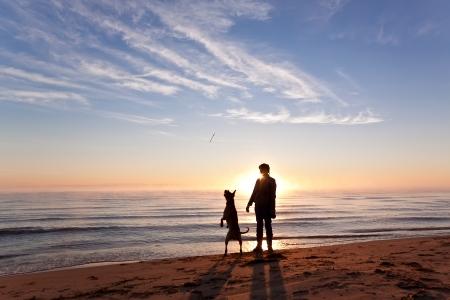 femme et chien: La femme joue avec le chien sur la rive du lac au lever du soleil Banque d'images