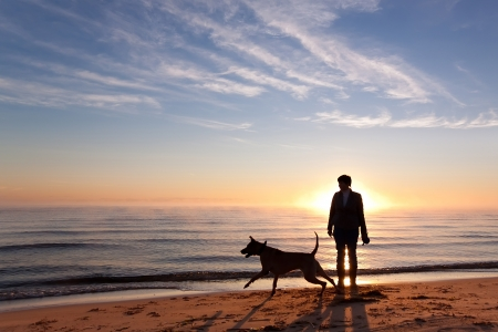 Woman plays with dog on the shore of the lake at sunrise photo