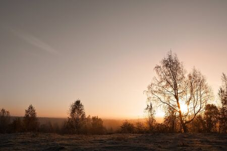 northern nature: Northern nature, sunrise over the meadow in autumn