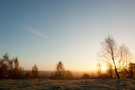 northern nature: Northern nature, sunrise over the meadow