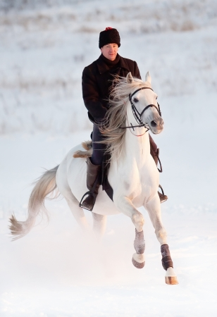 A man riding a Tersk stallion in a winter evening