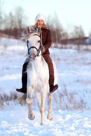 Beautiful young woman and Tersk stallion