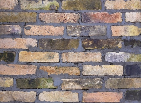 mildew: Texture of old brick wall Stock Photo